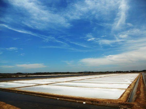 Quy trình sản xuất muối sạch trên cát: Bạn đã biết chưa?