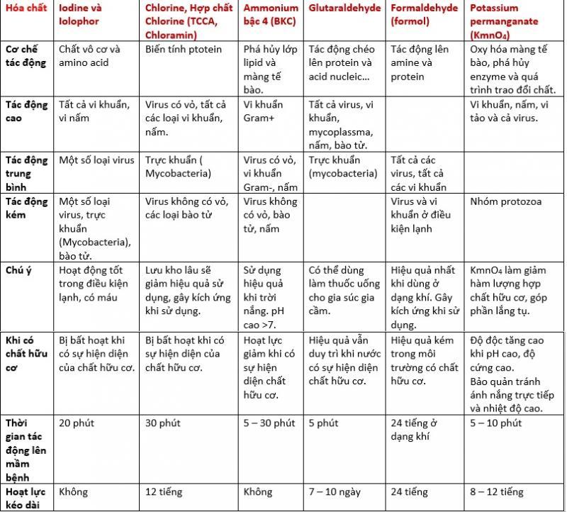 Kết hợp men vi sinh và chất khử trùng Chloramine-T hiệu quả